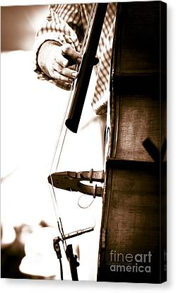 Stand Up Bass Player At Sunfest Canvas Print by Gordon Wood