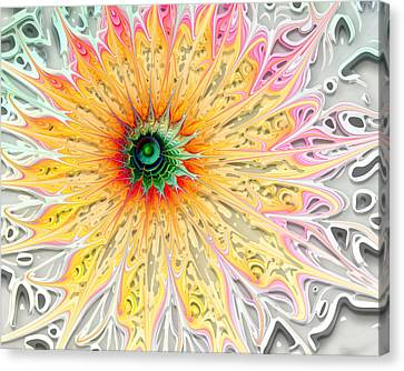 Starburst Canvas Print by Amanda Moore