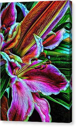 Stargazer Lilies Up Close And Personal Canvas Print by Bill Tiepelman