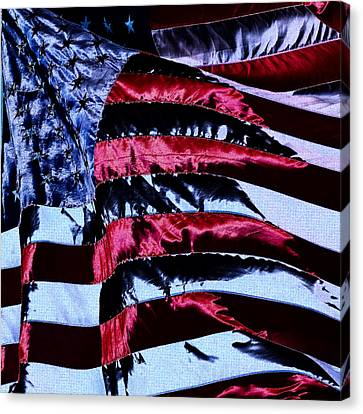 Stars And Stripes Canvas Print by David Patterson