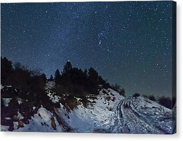 Stars In Sky At Night Canvas Print by Mabel