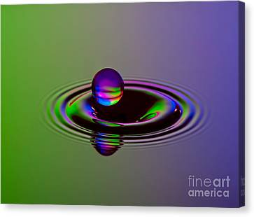 Times Canvas Print - Staying Afloat by Susan Candelario