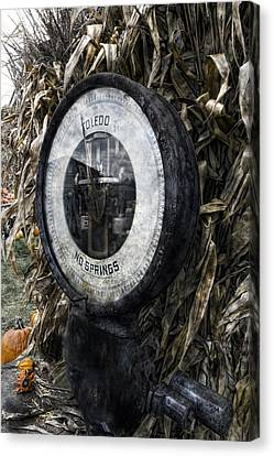 Steampunkin Scale Canvas Print by Peter Chilelli