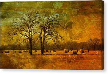 Steely Winter Skies Canvas Print by David Clanton