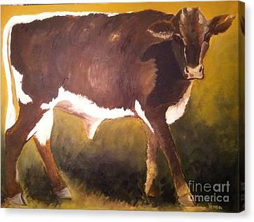 Steer Calf Canvas Print by Vonda Lawson-Rosa