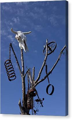 Steer Skull In Tree Canvas Print by Garry Gay