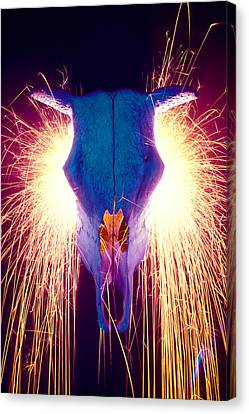 Steer Skull With Sparks  Canvas Print by Garry Gay