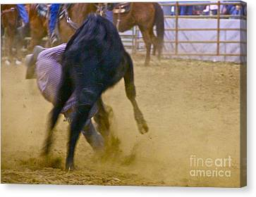 Sean Horse Canvas Print - Steer Wrestler by Sean Griffin