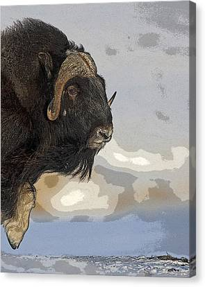 Stepping Into The Wind- Abstract Canvas Print by Tim Grams