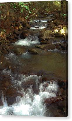 Stepping Stones Of The Mountains Canvas Print