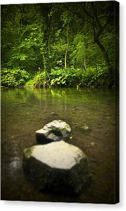 Stepping Stones Canvas Print by Svetlana Sewell