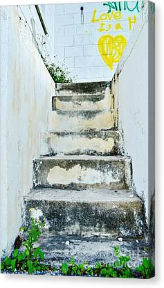 Stepping Up To Paradise In Color Canvas Print by Lynda Dawson-Youngclaus