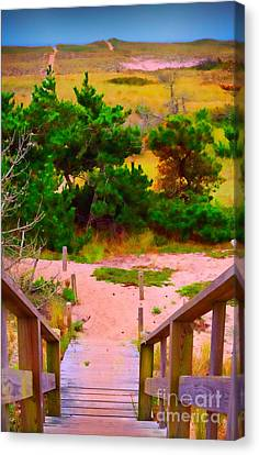 Canvas Print featuring the photograph Steps - Surfside Beach by Jack Torcello