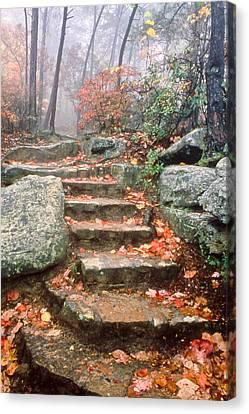 Steps Cloudland Canyon Canvas Print