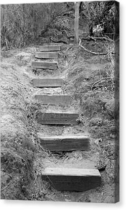 Canvas Print featuring the photograph Steps  by Elizabeth  Doran
