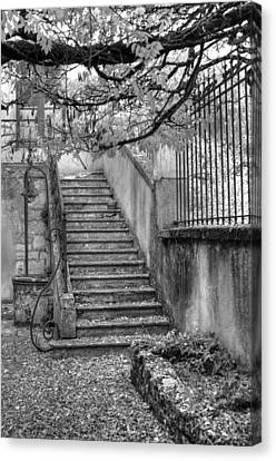 Steps Canvas Print by Jan Carr