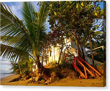 Steps To The Beach Canvas Print by Tim Fitzwater