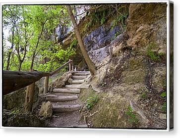 Steps To The Cave Canvas Print by Lisa  Spencer