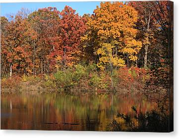 Sterling Pond Canvas Print by Lyle Hatch