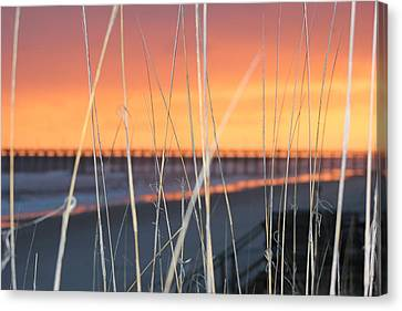 Sticks Canvas Print by Static Studios