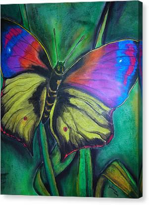 Still Butterfly Canvas Print by Juliana Dube