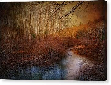 Still By The Stream Canvas Print by Robin-Lee Vieira