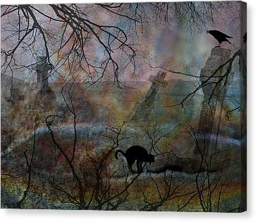 Still In There Canvas Print by Shirley Sirois