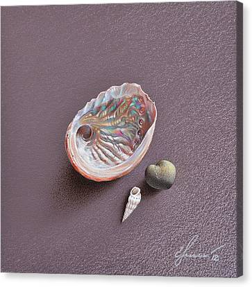 Still Life With Abalone Shell Canvas Print by Elena Kolotusha
