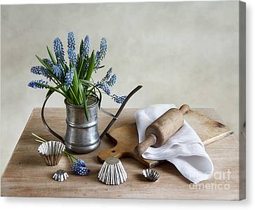Still Life With Grape Hyacinths Canvas Print by Nailia Schwarz