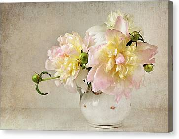Still Life With Peonies Canvas Print by Karen Lynch