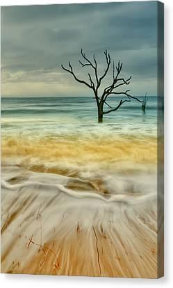 Still Standing Canvas Print