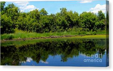 Canvas Print featuring the photograph Still Water by Jim Sauchyn
