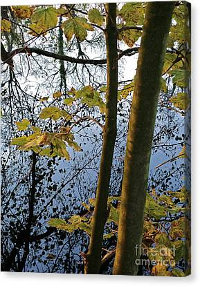 Still Waters In The Fall Canvas Print by Andy Prendy