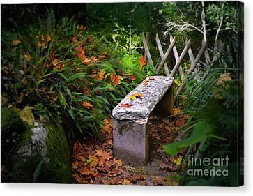 Maple Season Canvas Print - Stone Bench by Carlos Caetano