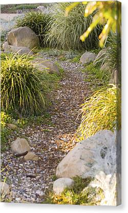 Stone Path Through Garden Canvas Print by James Forte