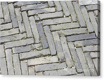 Stone Pavement Canvas Print by Shannon Fagan