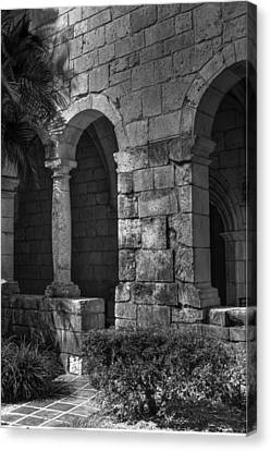 Stone Wall Canvas Print by Armando Perez