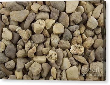 Stones Canvas Print by Blink Images