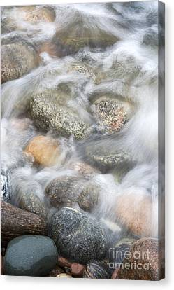 Stones In Water2 Canvas Print