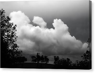Storm Canvas Print by Betsy Knapp