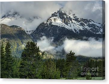 Storm  In The Tetons Canvas Print by Sandra Bronstein