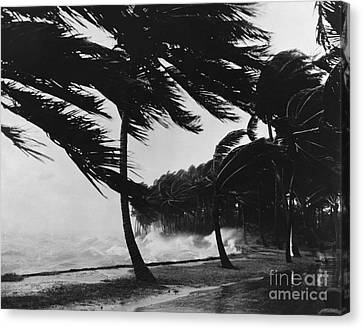Storm Surge Canvas Print by Omikron