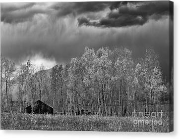 Stormy Morning In The Grand Tetons Canvas Print