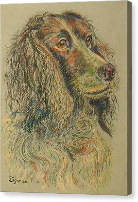 Straight From The Field - Spaniel Portrait Canvas Print by Richard James Digance
