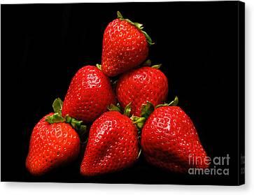 Strawberries On Velvet Canvas Print by Andee Design
