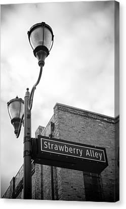 Strawberry Alley Canvas Print by Paul Bartoszek