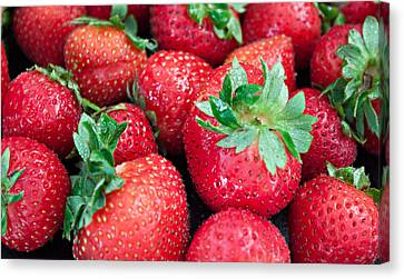 Strawberry Delight Canvas Print by Sherry Hallemeier
