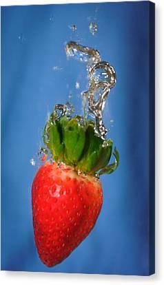 Strawberry Plunge Canvas Print by John White