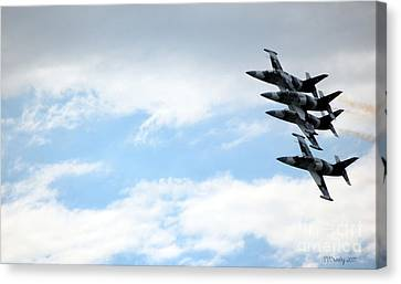 Streaking Across The Sky Canvas Print