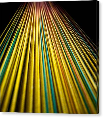 String Theory Canvas Print by Hakon Soreide